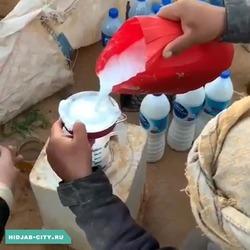 Верблюжье молоко (23 литра)